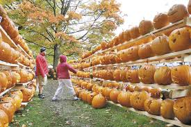 Pumpkin Festival Keene Nh 2017 by Scaled Back Version Of Pumpkin Festival Gets Final Approval In