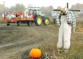 Best Pumpkin Picking In South Jersey by South Jersey Halloween Events 2017