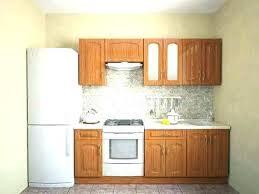 one wall kitchen – bloomingcactus