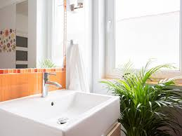 Best Plant For Your Bathroom by Choose The Right Plant For Your Bathroom Builders
