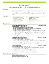 Best Customer Service Representatives Resume Example