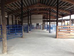 Calving Season - Eden Shale Farm Around The Farm Scissors Creek Cattle Company The Beutler Family Bench Design Hay Barn Plans Shed Heifer Development Way View Onduty Horse Csavvycom We Know Working Horses Katefairlie Kate Fairlie Kims County Line Cribs Aka Sheds Enduragate Setup Demstration For Calving Youtube Portable Calving Beef Facilities Pinterest Barn 332014 Calving2014 January 2014 Life On A Bc Ranch Slate Architecture Boots Heels Renovated Area