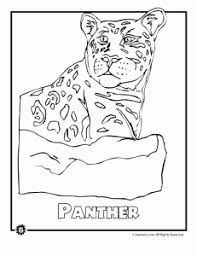 Endangered Panther Animal Coloring Page