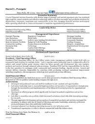 Sample Resume Of Banking Marketing Manager Best 10 Rh Bluegenie Co Templates