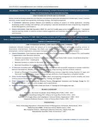 CEO Resume Sample Chief Technology Officer CTO Private