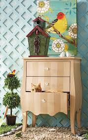 Cheeto Hiding In A Pier 1 Bombe Chest Love That Painted Trellis As Backdrop