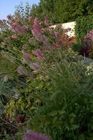 Greater Des Moines Botanical Garden Explore the Gardens