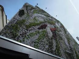 100 L Oasis DAboukir Ecologically Beautifying The City UrbanNext