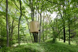 100 Tree House Studio Wood Yuan NASCA