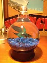 how to create a lightbulb fish tank snapguide