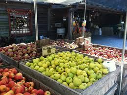 Wyckoff Christmas Tree Farm by The Top 10 Things To Do Near Residence Inn Saddle River Tripadvisor