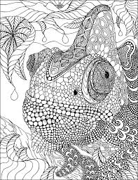 Lovely Chamelon Zentangle By Phil Lewis Art