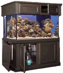 Extra Large Aquarium Decorations by Marineland Deep Dimensions Tanks
