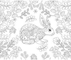 Rabbit Bunny Forest Coloring Adult Coloriage Colorir
