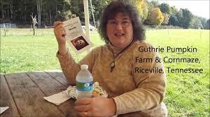 Daves Pumpkin Patch by Guthrie Pumpkin Farm Corn Maze Youtube