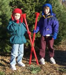 Xmas Tree Waterer by Tait Farms