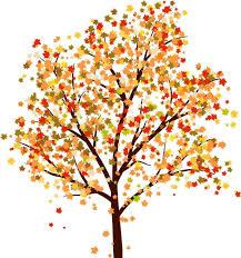 Download image oak tree drawing color