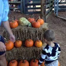 Closest Pumpkin Patch To Marietta Ga by Big Springs Farm 14 Photos Festivals 2100 Sugar Pike Rd