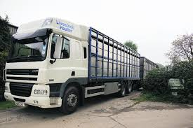 Bailiffs Strip Out Farm After Firm Folds With £23m Debts   Oxford Mail Cattle Transport Truck In Morocco Editorial Stock Image Of 100lt 20 Livestock Tractor Trailer Bateson Trailers 2004 Volvo Fm9 Rigid 6x4 Sheep Goat For Sale Trucks For Hire Willow Creek Ranch Live Atlas Plowman Containers Brothers 35 X 18 Cattle Trailers Sale Junk Mail Boxes Used P D Commercials Jm Welding Tamworth Australian Crate Specialists Versatility Makes Heavy Duty Hino The Right Choice Auto Moto Cannon Manufacturers Makers 1970 M35a2 Turbo Feed Truck Sale
