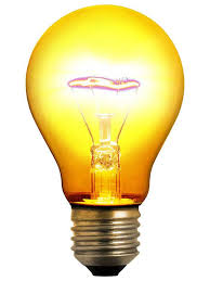 invented the light bulb