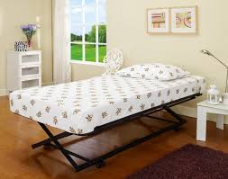 Day Beds At Big Lots by Bedroom Fabulous Queen Daybed With Storage Daybeds With Trundle