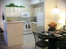 Apartment Kitchen Decorating Ideas Design For In With College