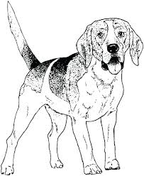 Printable Dog House Coloring Pages Free Pics Dogs Realistic Pregnancy Calendar Full Size