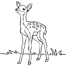 Deer Clipart Black And White ClipartXtras