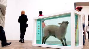 damien hirst at tate modern away from the flock