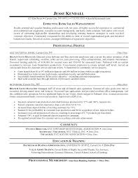 Sample Resume Sales Executive Bank As Well Resumes For Executives Examples