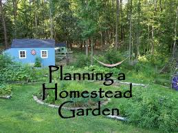 ▻ Backyard : 56 Backyard Vegetable Garden Design Ideas Network ... Buy The Backyard Homestead Guide To Raising Farm Animals In Cheap Cabin Lessons A Bynail Tale Building Our Dream Cottage Book Of Kitchen Skills Fieldtotable Knhow Preppernation Preppers Homesteaders Produce All The Food You Need On Just A Maple Sugaring Equipment And Supplies Pdf Part 32 Chicken Breed Chart Home What Can You Do With Two Acre Design