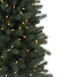 12 Ft Christmas Tree Canada by Sonoma Pencil Christmas Tree Balsam Hill