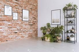 pflanzen unter malerei auf weißer wand im einfachen wohnzimmer mit bildern auf roter backsteinmauer