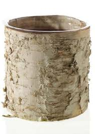 Birch Cylinder Vase With Clear Liner