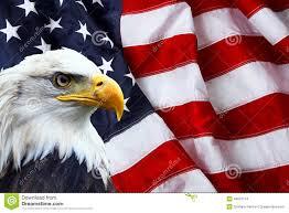 North American Bald Eagle On Flag
