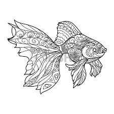 Gold Fish Coloring Book For Adults Vector Illustration Royalty Free Cliparts Vectors And Stock Image 54455543