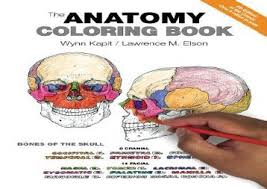 The Best Book Of Month Anatomy Coloring READ