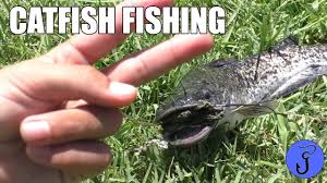 Kids Backyard Catfish Fishing With Hot Dog Bait - YouTube Diy Backyard Fishing Activity 3br House Boating Or From The Naplesflorida Landscaping Vancouver Washington Complete With Large Verpatio Six Mile Lakemccrae Lake July 1017 15 Youtube Pond Outdoor Goods Nick Wondo In Spin More Poi Bed Scanners Patio Heater Flame Tube Its Koi Vs Heron Chicago Police Officer In Epic Can Survive A Minnesota Winter The 25 Trending Ponds Ideas On Pinterest Ponds Category Arizona Game And Fish Flagstaff Stem City