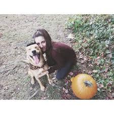 Spirit Halloween Newington Ct by Success Stories Connecticut Humane Society