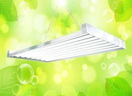 t5 grow light bulbs home depot t5 grow lights home depot t5 hommum