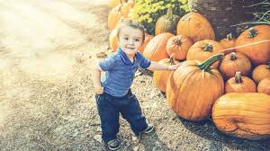 Pumpkin Patch Pasadena Tx by 5 Best Pumpkin Patches In The Houston Area Mommy Nearest