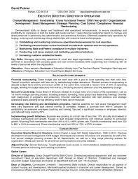 Of Board Directors Rhcheapjordanretrosus Template For Executive Director Valid Sample Rhcrossfitrespectcom Resume Summary Examples Nonprofit