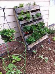 Diy Pallet Veggie Garden Elegant Vegetable Intended For Vertical