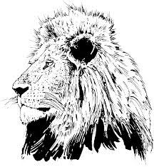 Realistic Lion Head Coloring Pages