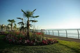 chambre d hote lac leman location vacances chambre d hôtes chalet le sentier balcon à la