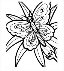 Free Coloring Pages Butterfly Printable Sheets Of Butterflies Monarch