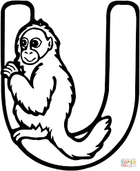 Letter U Is For Uakari Monkey