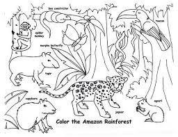 Coloring Pages Farm Animals Epic Animal Printable