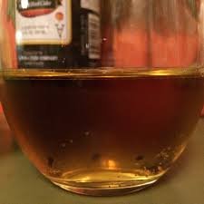 Ace Pumpkin Cider Where To Buy by What U0027s In Your Cup Fall Flavored Ciders Reviewed Interrobang Tarot