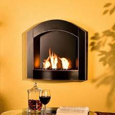 14 best indoor propane fireplaces images on Pinterest